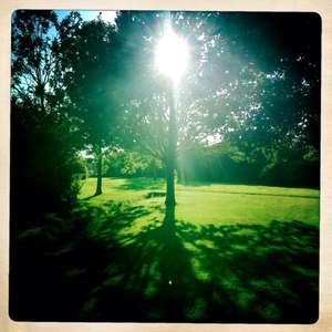 September light